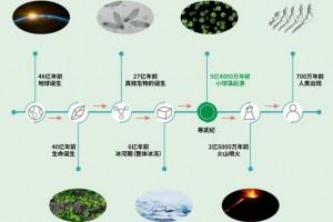 小球藻,来自五亿四千年前的健康密码